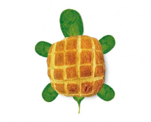 turtle ready made duchamp visual similarity bread