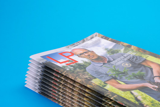 LP Magazine N.3 / Gianluca Camillini, Matteo Moretti /